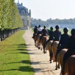 chevaux_henson