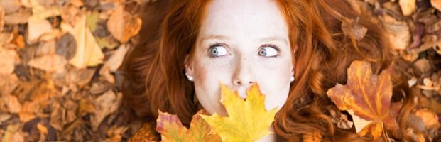 Offre automne