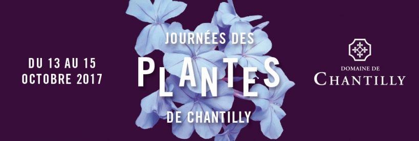 Chantilly Flower Festival, Flower Show