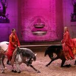 Equestrian show at the horse museum of Chantilly