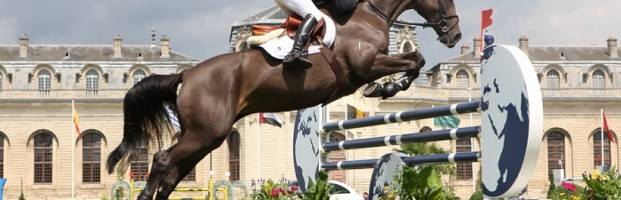 Jumping Chantilly